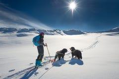 Eenzaam meisje in de bergen met ski het reizen en twee honden Stock Fotografie