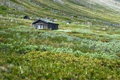 Eenzaam plattelandshuisje Royalty-vrije Stock Fotografie