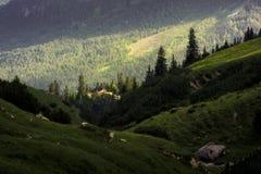 Eenzaam plattelandshuisje in de stralen van zonlicht royalty-vrije stock afbeelding