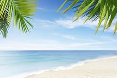 Eenzaam strand Royalty-vrije Stock Afbeeldingen