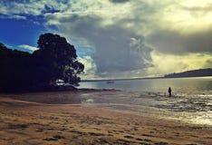 Eenzaam strand Stock Fotografie