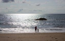 Eenzaam strand Royalty-vrije Stock Fotografie