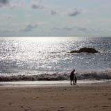 Eenzaam strand Royalty-vrije Stock Foto's