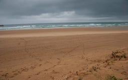 Eenzaam strandlandschap met voetstappen op het zand stock foto's