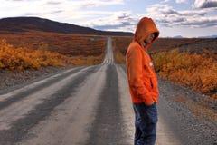 Eenzaamheid in Denali Royalty-vrije Stock Foto