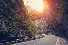 Eenzame asfaltlandweg EUROPA, ROEMENIË stock afbeelding