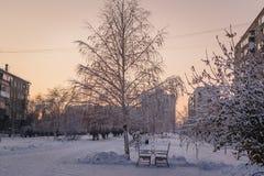 Eenzame bank in sneeuwpark Royalty-vrije Stock Afbeelding