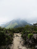 Eenzame berg Stock Fotografie