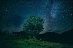 Eenzame boom in bergennacht Royalty-vrije Stock Fotografie