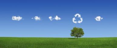 Eenzame boom en wereldkaartwolken (XXXLarge) Stock Afbeeldingen