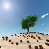 Eenzame boom in het midden van stompen Stock Afbeeldingen