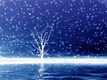 Eenzame boom in sneeuw. Royalty-vrije Stock Fotografie