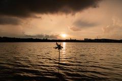 Eenzame boom tijdens zonsondergang vóór het onweer royalty-vrije stock fotografie