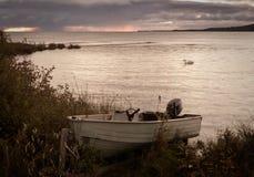 Eenzame Boot met Eenzame Zwaan Stock Foto's