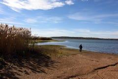 Eenzame gang door het meer stock afbeelding