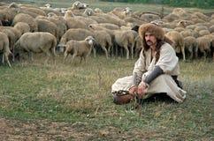 Eenzame herder met schapen op groene weide Stock Foto
