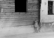 Eenzame Jongen Stock Foto