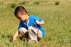 Eenzame jongen op het gebied Stock Afbeeldingen