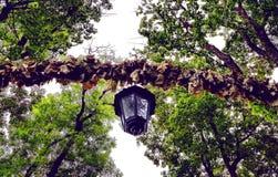 Eenzame lamp in aard royalty-vrije stock foto's