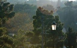 Eenzame lamp in zonlicht Stock Foto