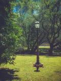 Eenzame lantaarnpaal in het park stock foto