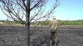 Eenzame mens die zich onder de gebrande boom op het gebied na wildfire bevinden, de ramp van de ecologiecatastrofe, wanhoop en stock footage