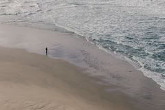Eenzame Mensen vroege ochtend het letten op vogels en oceaangolven Stock Fotografie