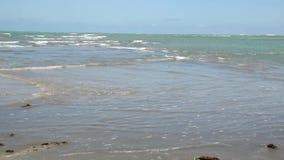 Eenzame Rek van Strand at low Tide stock videobeelden