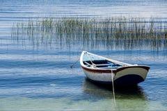 Eenzame rijboot op meertiticaca in het midden van palmriet Stock Foto