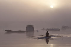 Eenzame roeier op rivier bij nevelige zonsopgang Royalty-vrije Stock Foto
