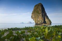 Rots bij een strand dichtbij Krabi, Thailand Stock Foto's