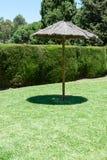 Eenzame schaduwparaplu op een groen gazon stock afbeeldingen