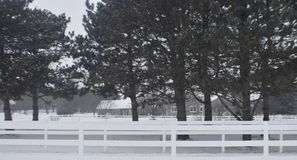 Eenzame schuur in de winter Stock Foto