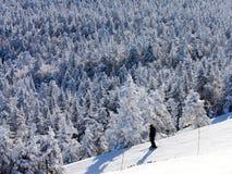 Eenzame Skiër Stock Afbeeldingen