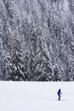 Eenzame skiër royalty-vrije stock fotografie