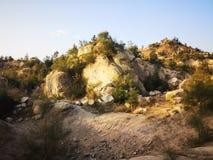 Eenzame steen bij zonsondergang stock foto's