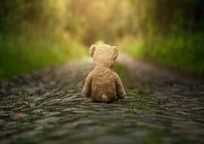 Eenzame teddybeer op de weg Royalty-vrije Stock Fotografie