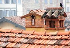 Eenzame vogel op schoorstenen Stock Afbeeldingen