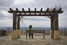 Eenzame vrouw die het landschap bekijkt royalty-vrije stock afbeelding