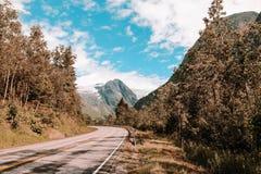 Eenzame weg in Noorwegen met de mening bij de bergen royalty-vrije stock fotografie