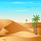 Eenzame Woestijn Stock Afbeelding