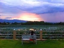 Eenzame zonsondergang Stock Foto's