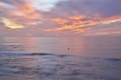 Eenzame Zonsondergang Surfer stock foto