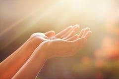 Eerbied en het bidden op aardachtergrond Stock Afbeeldingen
