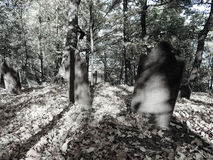 Eerie grave yard. Low color picture of a old graveyard Stock Image