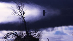 Eerie Misty Lake Royalty Free Stock Photo