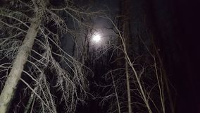 Eerie moon royalty free stock photography