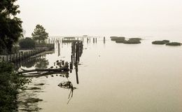 Eerie fog on Potomac River in the morning Royalty Free Stock Photos
