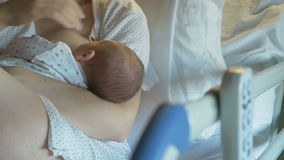 Eerst de borst gevend, moedermelk stock video