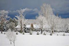 Eerste Dag van Sneeuw in het Land Stock Foto